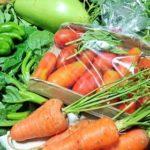 菜祝ぎ菜園の野菜を通して知る「違い」の大切さ